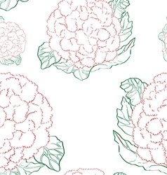cauliflower pattern vector image vector image