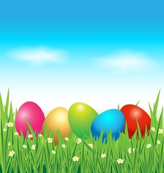 Colorful easter eggs on green grass vector