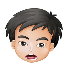 Face of a boy vector image vector image