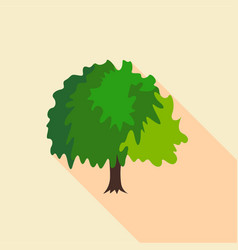 fluffy tree icon flat style vector image