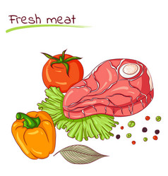 Fresh meat and vegetables vector