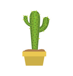 White background with cactus with two branches on vector