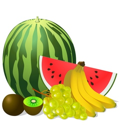 Still life fruits banana watermelon grape kiwi vector