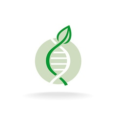 Plant nature genetic engineering symbol green leaf vector