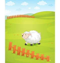A sheep at the field vector