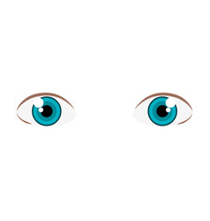 Beautiful eyes view icon vector
