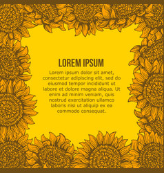 card with graphic sunflower frame vector image vector image