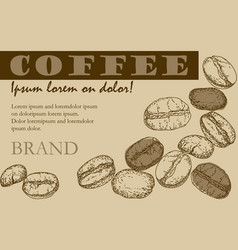 painted coffee beans sketch drawing vector image