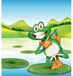 A happy frog standing above the waterlily vector