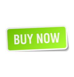 Buy now green square sticker on white background vector
