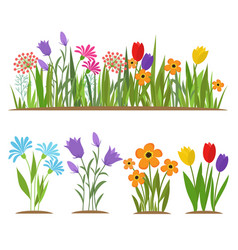 Early spring forest and garden flowers isolated on vector