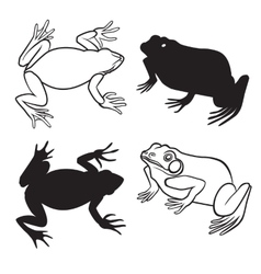 Two frog silhouettes vector