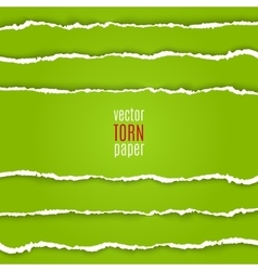 Green torn paper vector image