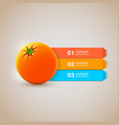 Realistic fresh orange infographics options vector