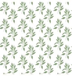 Seamless pattern green leaves of sandalwood vector