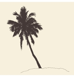 Palm tree bounty vintage engraving sketch vector