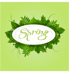 Spring badge elipse frame vector