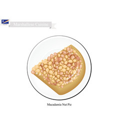 Macadamia nut pie vector