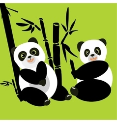 Two pandas sit in the woods and eat bamboo vector