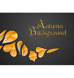 background autumn dark vector image vector image