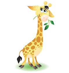 Happy very cute baby giraffe vector image vector image