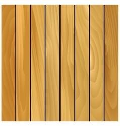Pine wooden texture pattern background vector image vector image