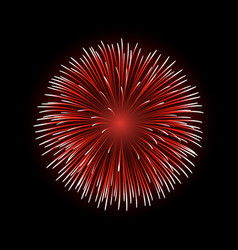 firework bursting sparkle isolated vector image vector image