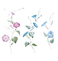 Gentle watercolor flowers vector