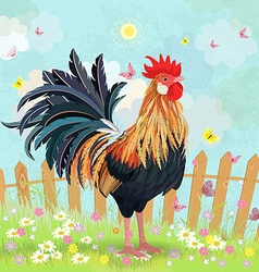 lovely rooster in summer rural scenery vector image