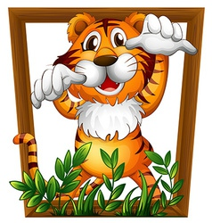Tiger and frame vector image