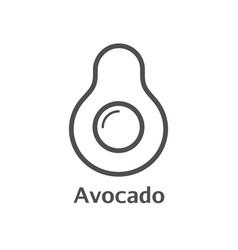 Avocado thin line icon isolated avocado fruit vector