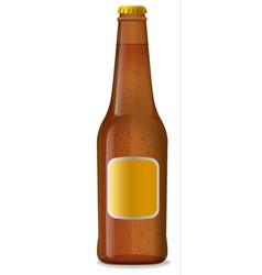 Beer brown bottle vector