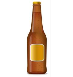 beer brown bottle vector image vector image