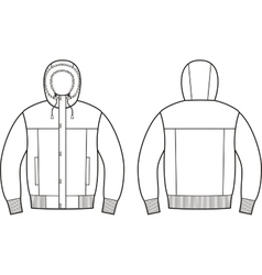 Down jacket vector image vector image