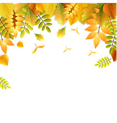 falling autumn leaves background in bright colors vector image vector image