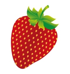 Strawberry fresh fuit healthy isolated icon vector