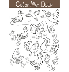 The set of ducks and ducklings vector