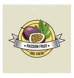 Maracuya or passion fruit vintage hand drawn vector