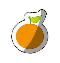 Color orange fruit icon stock vector