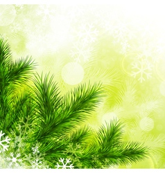 Fir Tree vector image vector image