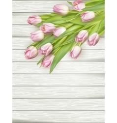 Fresh pink tulips EPS 10 vector image vector image