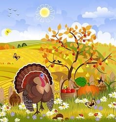 lovely turkey in autumn sunny day happy vector image