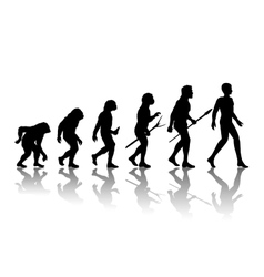 Man evolution vector