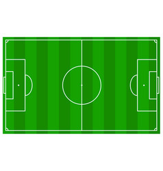 soccer field with real measures and texture grass vector image