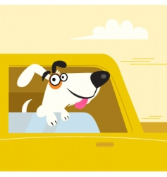 white dog travel in car vector image