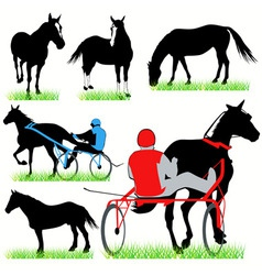 Jockeys and horses set vector