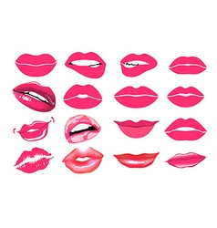 Collage pink lips set of isolated women lips on vector