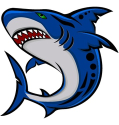 angry shark vector image vector image