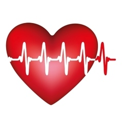 heart and cardiogram icon image vector image