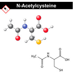 acetylcysteine mucolytic expectorant detoxifying vector image vector image